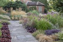 Penstemon 'Raven', Heuchera 'Plum Pudding' edging stone path, Deschampsia cespitosa, Echinacea purpurea 'Magnus', hylotelephium syn. sedum, Erigeron karvinskianus