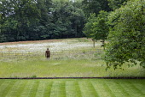 View across lawn to sculpture by Antony Gormley in long grass meadow, ha-ha