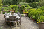 Wooden table and chairs by Gaze Burvill on stone patio, cloud-pruned Buxus sempervirens, clipped hornbeam domes, fire bowl, veronicastrum, euphorbia, succulents in pot