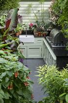 Outdoor kitchen in exotic courtyard, Fuchsia splendens, Ensete ventricosum 'Maurelii', Begonia 'Million Kisses Elegance'