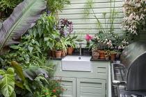Outdoor kitchen, sink, Begonia 'Million Kisses Elegance', succulents in pots, Kalanchoe tomentosa 'Nigra', Aeonium spathulatum, Aeonium 'Blushing Beauty', Solenostemon 'Walter Turner', sempervivum, Ae...