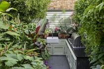 Outdoor kitchen in exotic courtyard, Hedychium densiflorum 'Stephen', Ensete ventricosum 'Maurelii', Begonia 'Million Kisses Elegance'