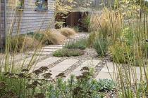 Stepping stone path across gravel, Stipa gigantea, Calamagrostis × acutiflora 'Karl Foerster', Verbena bonariensis, Anemanthele lessoniana, Lavandula angustifolia 'Hidcote'