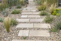 Stepping stone path across gravel border, Erigeron karvinskianus, Stipa tenuissima
