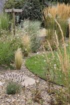 Gravel border around circular lawn, Stipa tenuissima, Calamagrostis × acutiflora 'Karl Foerster', Gaura lindheimeri