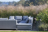 Outdoor chairs with cushions on terrace surrounded with miscanthus, Rosa 'Queen of Sweden', Lavandula angustifolia 'Hidcote'