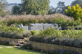 Outdoor chairs with cushions on terrace surrounded with miscanthus, Geranium 'Rozanne', stone wall, Rosa 'Queen of Sweden', Lavandula angustifolia 'Hidcote'
