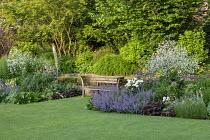 Wooden bench by Gaze Burvill on lawn, Hakonechloa macra, Crambe cordifolia, Nepeta racemosa 'Walker's Low', Paeonia lactiflora 'Jan van Leeuwen', allium, Lavandula angustifolia 'Munstead'