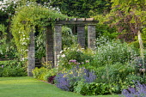 Stone and timber pergola, clematis, roses, Nepeta racemosa 'Walker's Low', Papaver orientale 'Patty's Plum', aquilegia, Crambe cordifolia, cotinus