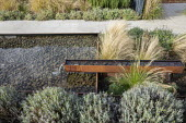 Formal pool and fountain edged with Cor-Ten steel, Stipa tenuissima, lavender, stone path, Nepeta racemosa 'Walker's Low'