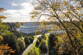 View from Treetop Walkway looking towards Temperate House, quercus