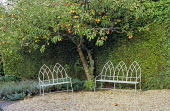 Metal Gothic benches on gravel terrace under apple tree