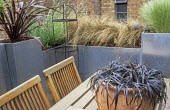 Roof terrace, phormiums and grasses in galvanized zinc containers around wooden table and chairs