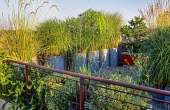 Red railing, trough with herbs, Verbena bonariensis, galvanized containers with grasses as windbreak, Cortaderia richardii