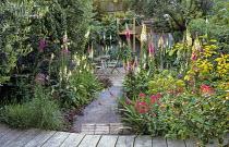 Split-level garden, table and chairs on patio, Digitalis purpurea