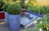Roof terrace, galvanized containers with clipped box domes, skylight, red painted wall
