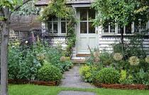 Woven willow border edging, path leading to summerhouse, alliums, clipped box domes, Alchemilla mollis