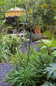 Slate path, table and chairs on slate chippings terrace, parasol, Sophora tetraptera, Iris confusa