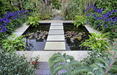 Stepping stone path across square pond, waterlilies, agapanthus, acanthus, Zantedeschia aethiopica