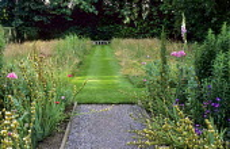Mown grass path through long grass wildflower meadow, Sisyrinchium striatum