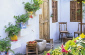 Pelargoniums in recycled tin cans on stepped shelves on mediterranean courtyard wall, stone basin, chairs, wooden door
