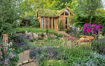 Garden building with living green sedum roof, Verbascum 'Eleanor's Blush', Cirsium rivulare 'Atropurpureum', lavender, wooden bench