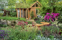 Garden building with living green sedum roof, Verbascum 'Eleanor's Blush', Cirsium rivulare 'Atropurpureum', wooden bench, rhododendron, heuchera