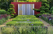 Box topiary, red painted wall, cloud-pruned box, niwaki, Iris sibirica