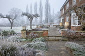 Stone terrace by house in frost, low brick wall, terracotta urn water butts, apple trees in lawn
