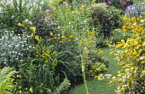 White and yellow border, Chamaenerion angustifolium 'Album' syn. Epilobium angustifolium var. album, hemerocallis, Achillea 'Schwefelblute', syn. 'Flowers of Sulphur', Delphinium 'Butterball', euonymu...