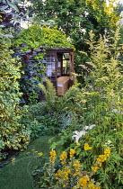 Summerhouse, Lysimachia punctata 'Alexander'