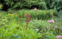 Bog garden, bridge, amphora, irises, Thalictrum aquilegifolium, rheum