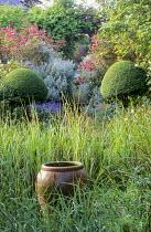 Rushes, terracotta container, clipped ligustrum, Rosa 'Buff Beauty', Rosa x odorata 'Mutabilis'