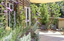Roof terrace, decking, trellis, Verbena bonariensis, zinc containers with bamboo