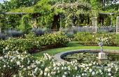 Sunken rose garden, circular pond with cupid, pergola, nepeta