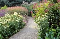 Path, Echinacea purpurea 'Green Edge', Eupatorium 'Atropurpureum', Persicaria amplexicaulis 'Rosea', Miscanthus sinensis 'Roland'