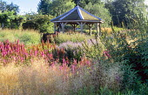 View over Millenium garden to pavilion, Lythrum salicaria, Astilbe chinensis var. taquetii 'Purpurlanze', Deschampsia cespitosa 'Goldtau', veronicastrum