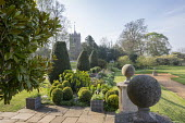 Clipped Buxus sempervirens, Taxus baccata, euphorbia, church