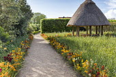 Thatched summerhouse, gravel path edged with colourful wallflowers