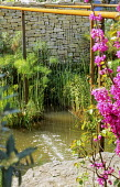 Curtain water feature, daphne, papyrus, rock