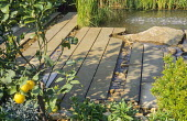 Strips of stone paving by pond