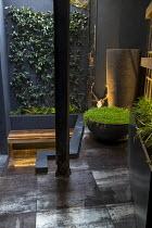 Tall pot, Soleirolia soleirolii in large pot on patio, deer skull, black paving