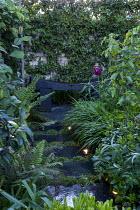 Stepping stone path leading to wooden bench in tiny courtyard garden, Trachelospermum jasminoides climbing over wall, Hakonechloa macra