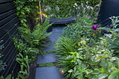 Stepping stone path leading to wooden bench in tiny courtyard garden, Hakonechloa macra