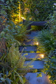 Stepping stone path leading to wooden bench in tiny courtyard garden