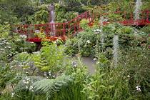 Red painted bridge walkway, Tillandsia usneoides, Valeriana officinalis, Lophosoria quadripinnata, Solanum crispum
