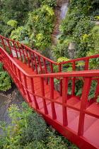 Red painted walkway bridge, waterfall, Adiantum raddianum 'Fragrantissimum', Buddleja globosa, Fuchsia magellanica, Lophosoria quadripinnata
