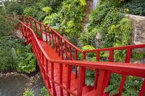 Red painted walkway bridge, waterfall, Adiantum raddianum 'Fragrantissimum'