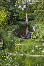 Bronze sculpture, Nyneve, reflected in formal pool, Anthriscus sylvestris, Ranunculus acris, Corylus avellana 'Aurea', Iris pseudacorus