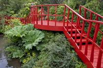 Waterfall, Gunnera manicata, red painted walkway bridge, Fuchsia magellanica